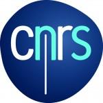 CNRS logo filaire